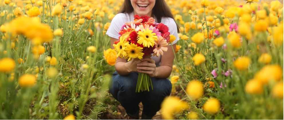 Woman Holding Daisies in Flower Field