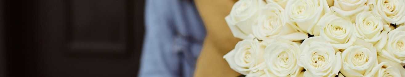 category-banner-img