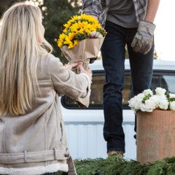 Man Giving Woman Sunflower Bouquet