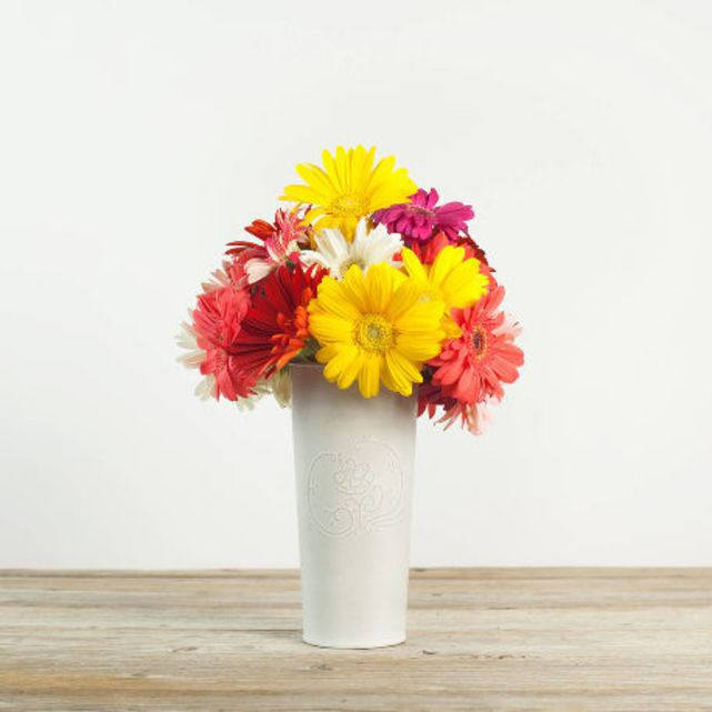 colorful mix of gerbera daisies 2