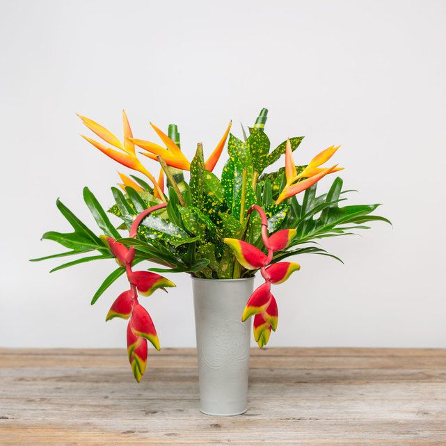 exotic orange and pink heliconia flowers with palm accents 6