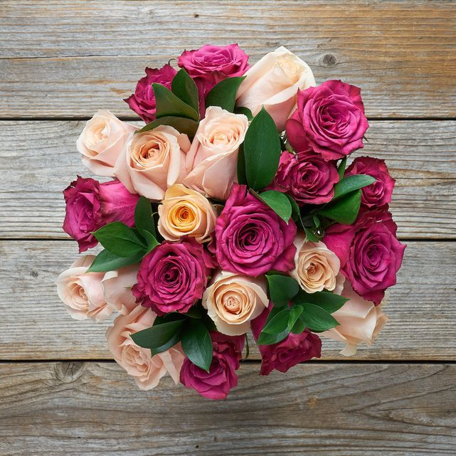peach and wine pink roses 2