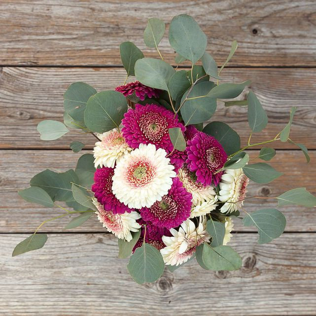white and pink pomponi daisies with seeded eucalyptus 1