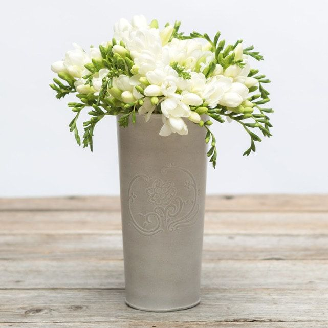 white freesia 6